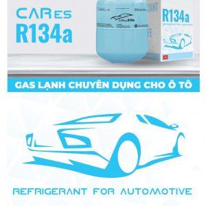 Gas Cares 134a